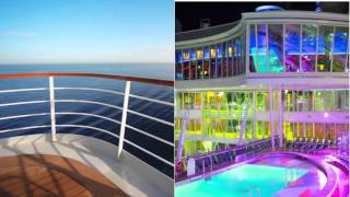 Love the cruise business opportunity
