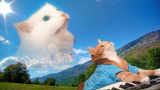 Astronomia - Coffin Dance Meme - Cat Cover