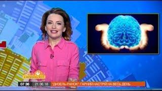 В организме человека нашли второй мозг | Дизель Утро