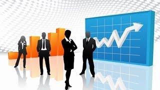 Эластичность спроса и ее правильное использование для роста доходов компании