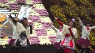 11月6日 弘前城菊と紅葉まつり りんご娘ライブ から「りんごのキモチ...