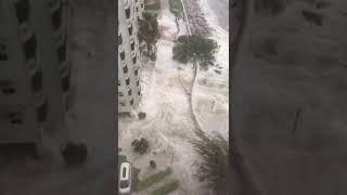 10號杏花邨水浸