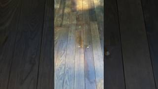 CFP Novawood Cladding & Decking