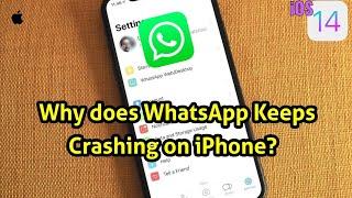 iOS 14: WhatsApp keeps Crashing|Cannot Open WhatsApp on iPhone [Fixed]