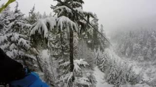 Whistler Trip Feb 2017