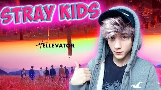 "Baixar Stray Kids ""Hellevator"" M/V Реакция | jypentertainment (K-pop группа Stray Kids)"