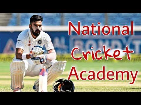 National Cricket Academy Fees || Selection Process || Spo Tech
