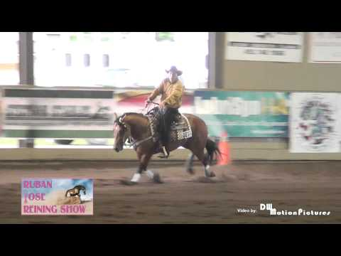 Sparks Shinning Doll Quebec Pink Ribbon Reining Futurity Champion