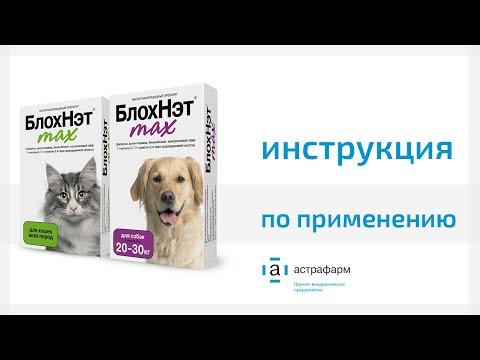 БлохНэт max. Инструкция по применению для кошек и собак