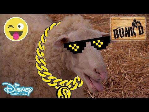 Bunk'd | Sheila'z Song | Official Disney Channel UK