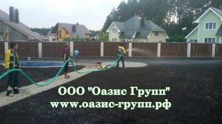 видео Озеленение дачного участка декоративными растениями в  Москве