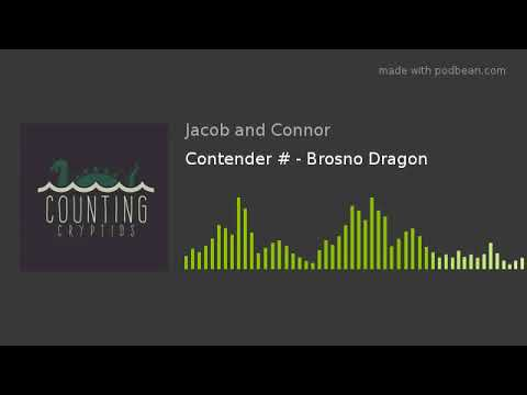 Contender # - Brosno Dragon
