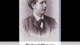 Richard Strauss: Serenade for 13 wind Instruments op.7