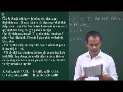 Giải đề thi đại học môn sinh năm 2012 – thầy Kiều Vũ Mạnh