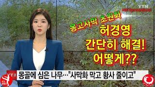 몽고사막 초원화로 암유발 미세먼지 없애 국민건강 책임 …