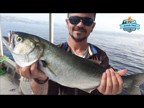 Dev Balıklar Burada!! 40 Saatlik İzmir Didim Avımız Başlıyor ;) 23 Mayıs 2018