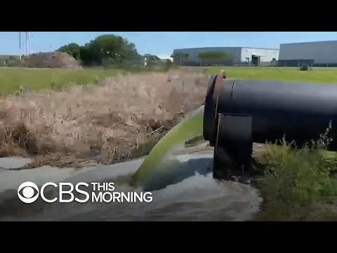 Concerns grow that release of wastewater in Florida could have environmental consequences