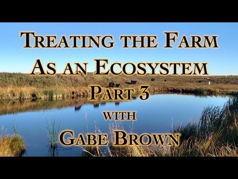 Treating the Farm as an Ecosystem Part 3 with Gabe Brown
