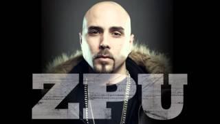ZPU - Contradicziones