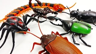 Super Creepy Toys Collection R/C Spider Cockroach Centipede Ant Hercules Beetle