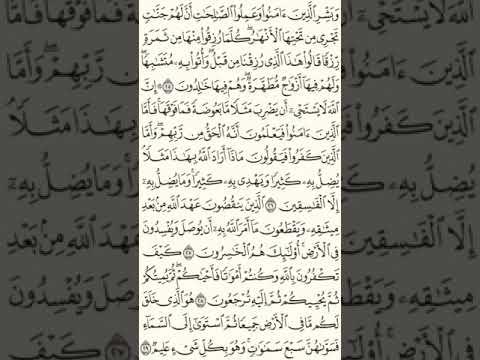 Бакара стр 5. Quran Training