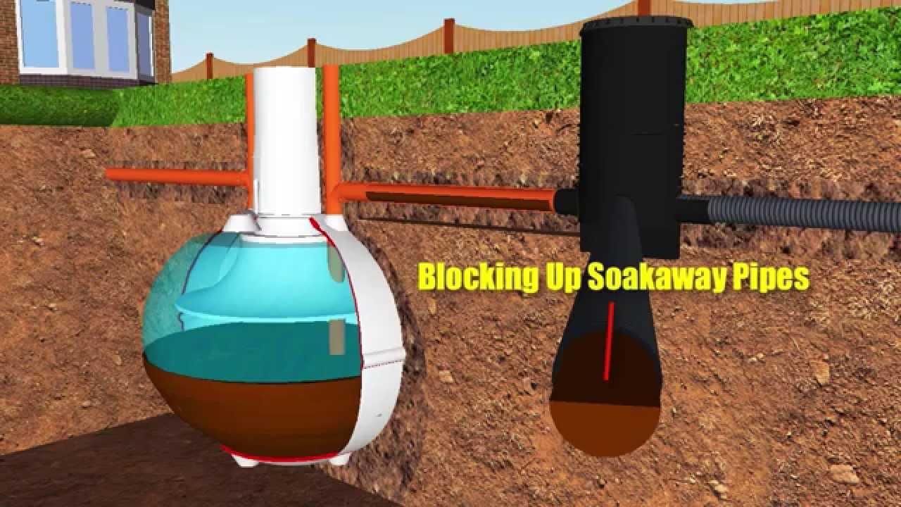 Septic Tank Soakaway Worms Youtube