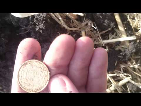 First ever gold sovereign coin - metal detecting