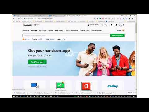 Pointing a Godaddy Hosted Domain To The Agent Site