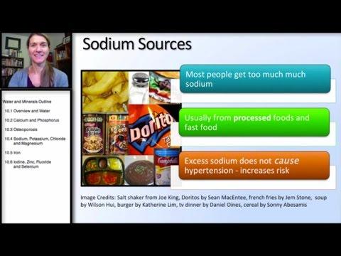 10.4 Minerals: Sodium, Potassium, Chloride, Magnesium