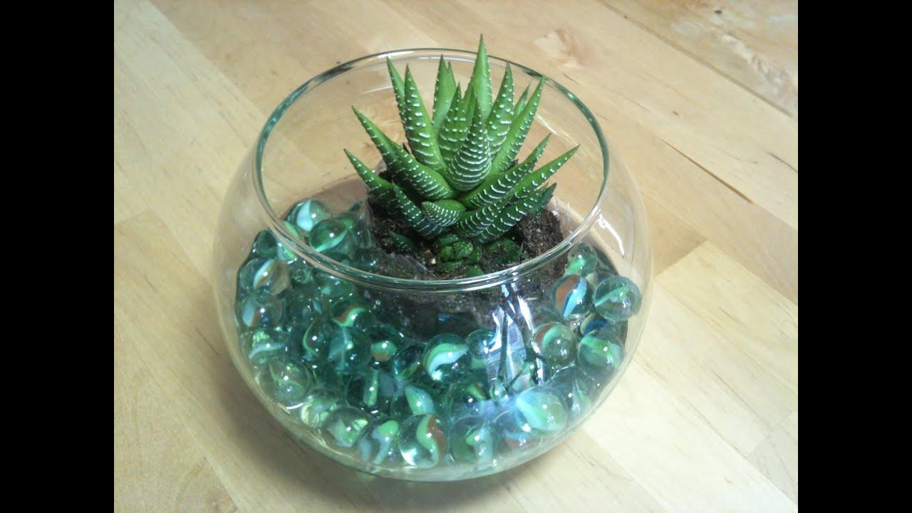 C mo hacer un centro de mesa con cactus y pecera - Como decorar un cristal de mesa ...