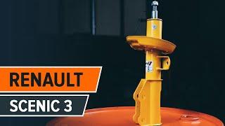 Kennzeichenleuchten Glühlampe beim RENAULT SCÉNIC III (JZ0/1_) montieren: kostenlose Video