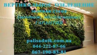Вертикальное озеленение устройство зеленой стены(Устройство зеленой стены с растений. Вертикальное озеленение офиса, дома, ресторана. Конструкция автополив..., 2015-12-30T00:35:44.000Z)