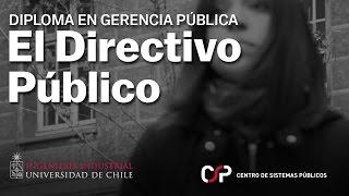El Directivo Público en las instituciones del Estado