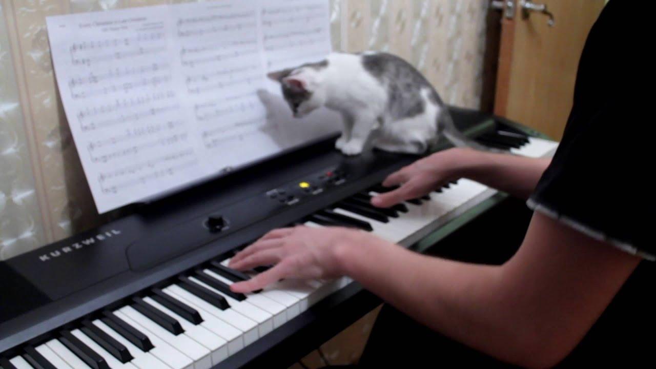 учитель музыки фото