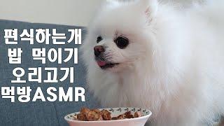 [단추먹방]편식하는 강아지 밥먹이기   오리고기먹방  …