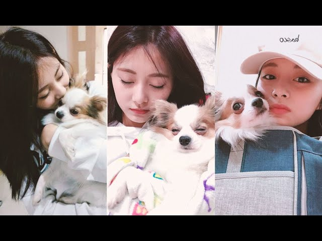 Tzuyu🧡Gucci-Thank you for being with Tzuyu for this past 11 years.