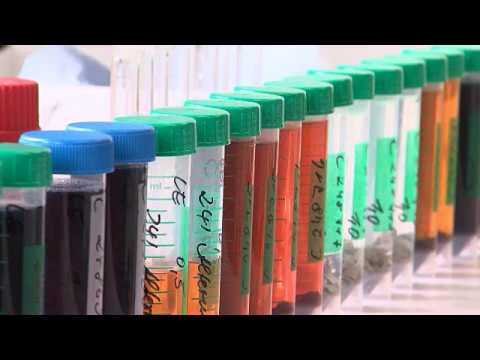 Bureau Veritas CPS - Chemical / Analytical Testing Services