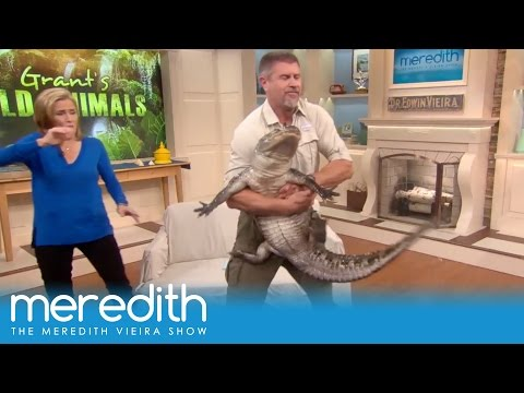 Alligators And Leopard's And Hyena's, Oh My! | The Meredith Vieira Show