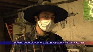 Yvelines | Des animations pour Halloween à la Bergerie nationale de Rambouillet