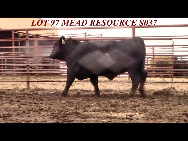 Mead Farms Lot 97