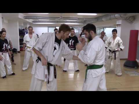 Shinseikai Training with Carlo Pedersoli Jr - Full Lenght Video