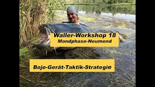 Waller-Workshop Teil 18 / Bojenangeln-Taktik-Strategie / Mondphasen / Angelgerät  by Stefan Seuss