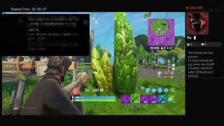 Fortnite ps4 game play #22