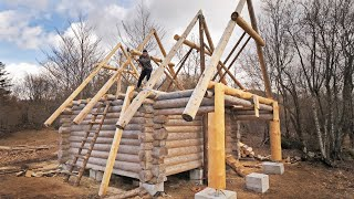 Building Off Grid Log Cabin / Finishing DIY Roof Trusses ALONE