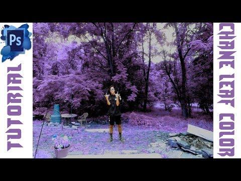 DREAMLAND effect(change leaf color)•Photoshop tutorial thumbnail
