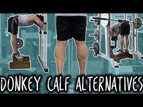 Donkey Calf Raise Machine ALTERNATIVES
