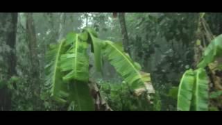 beautifull rain in kerala