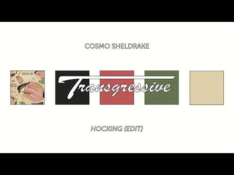 Cosmo Sheldrake - Hocking (Edit)