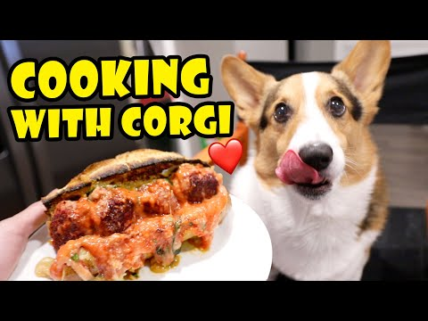 cooking-with-corgi-dog:-breakfast,-lunch-dinner-||-life-after-college:-ep.-692