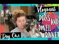 Dogs and Dwell Dinners| Vlogmas Day 1